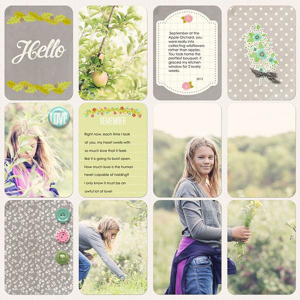 Jenn McCabe | Floral Theme Pack